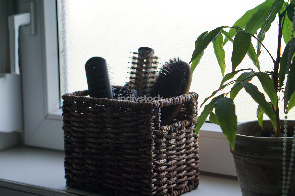 hairbrushes on the windowsill in the bathroom in front of a smal