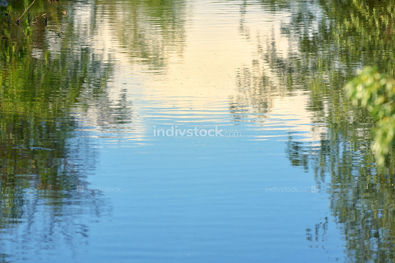 Sky and trees reflected in water