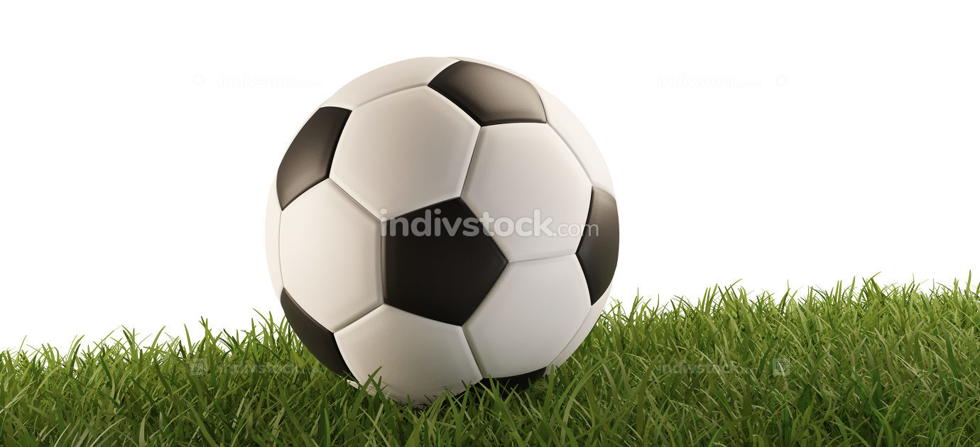 soccer ball green grass 3d-illustration isolated