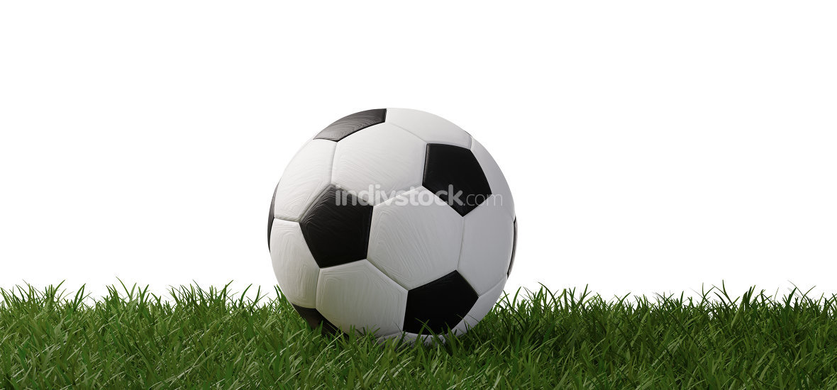 soccer ball on grass 3d-illustration isolated on white