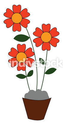 A bunch of red flowers vector or color illustration