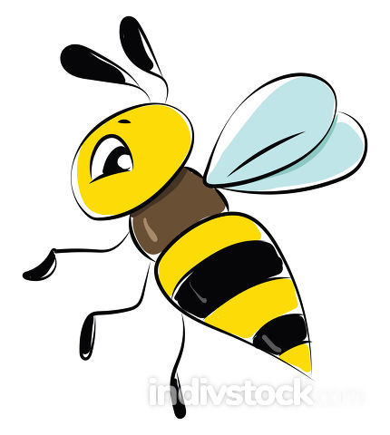 Image of bee, vector or color illustration.