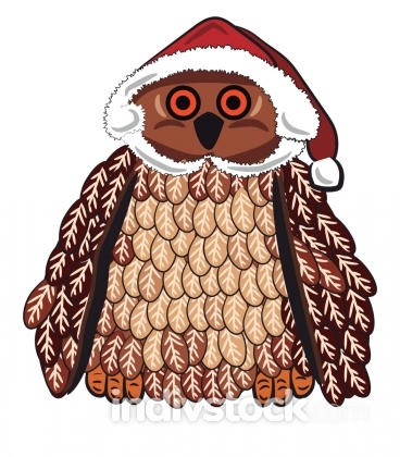 Owl with Santa cap vector or color illustration