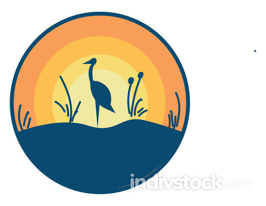The scenic view of a landscape with an ostrich bird standing in