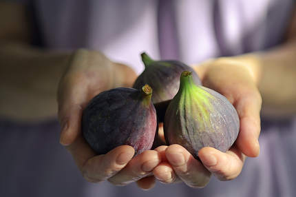 Fresh Figs Holded By Woman