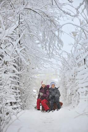 Kids Sliding In Winter Time