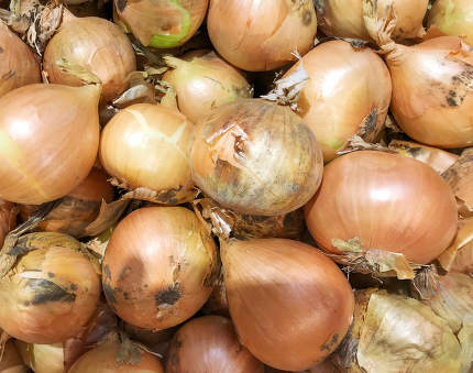 onions,background