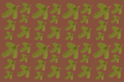 Pattern With Green Pine Branches