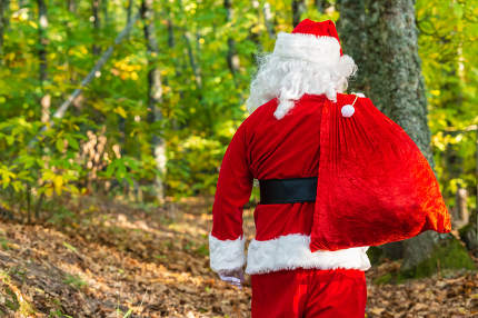 Santa Claus with red bag  in forest with copy space
