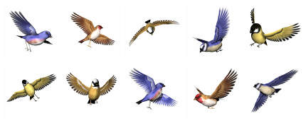 Set of finch birds - 3D render