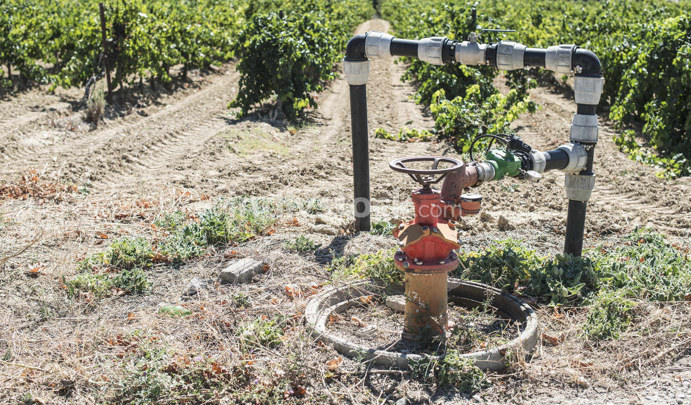 Agriculture faucet
