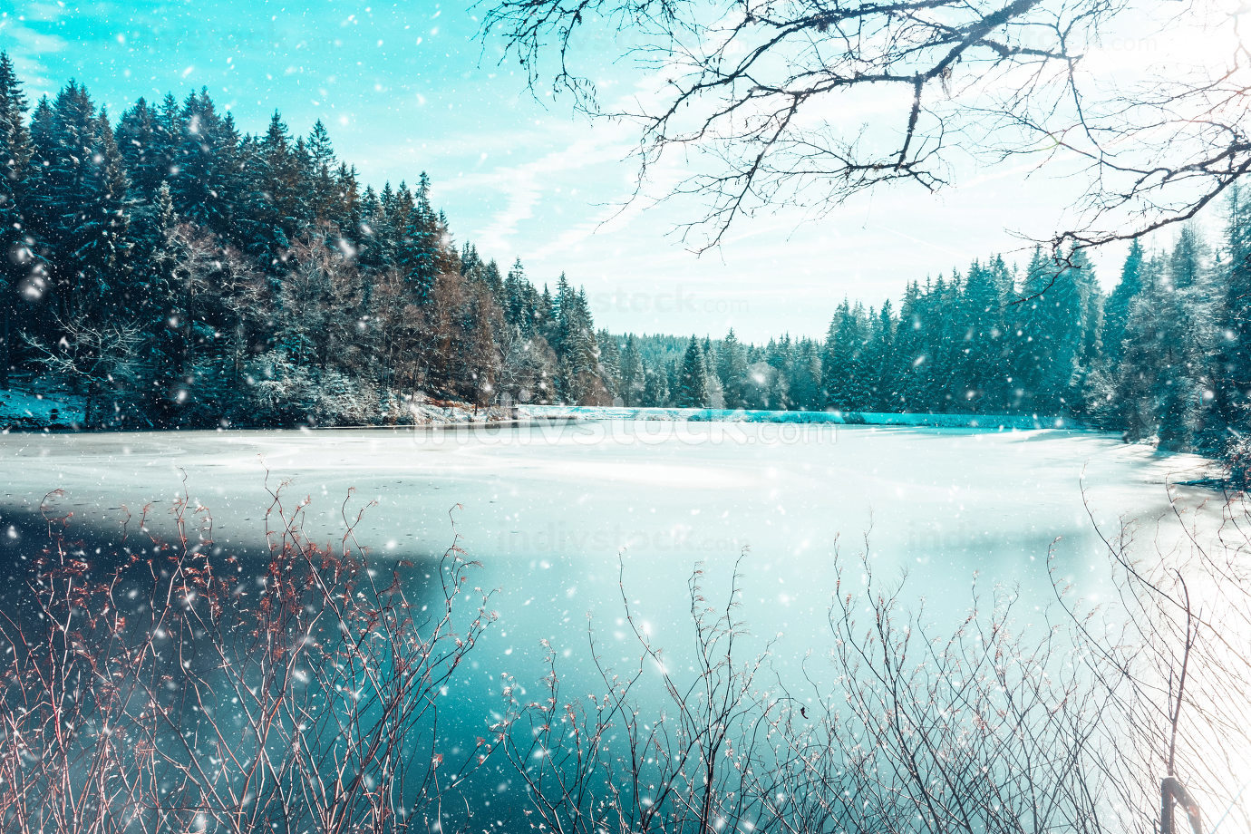 an idyllic forest lake in winter