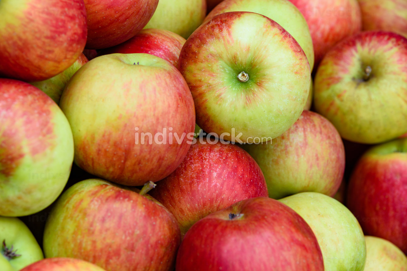 Beautiful apples background