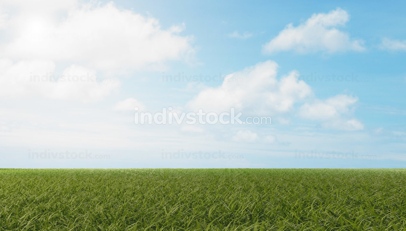 blue sky white clouds and green meadow background 3d-illustratio