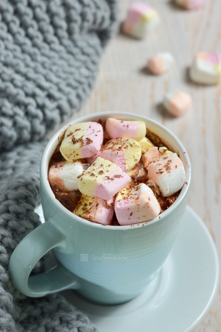 Hot chocolate with marshmallows and winter scarf