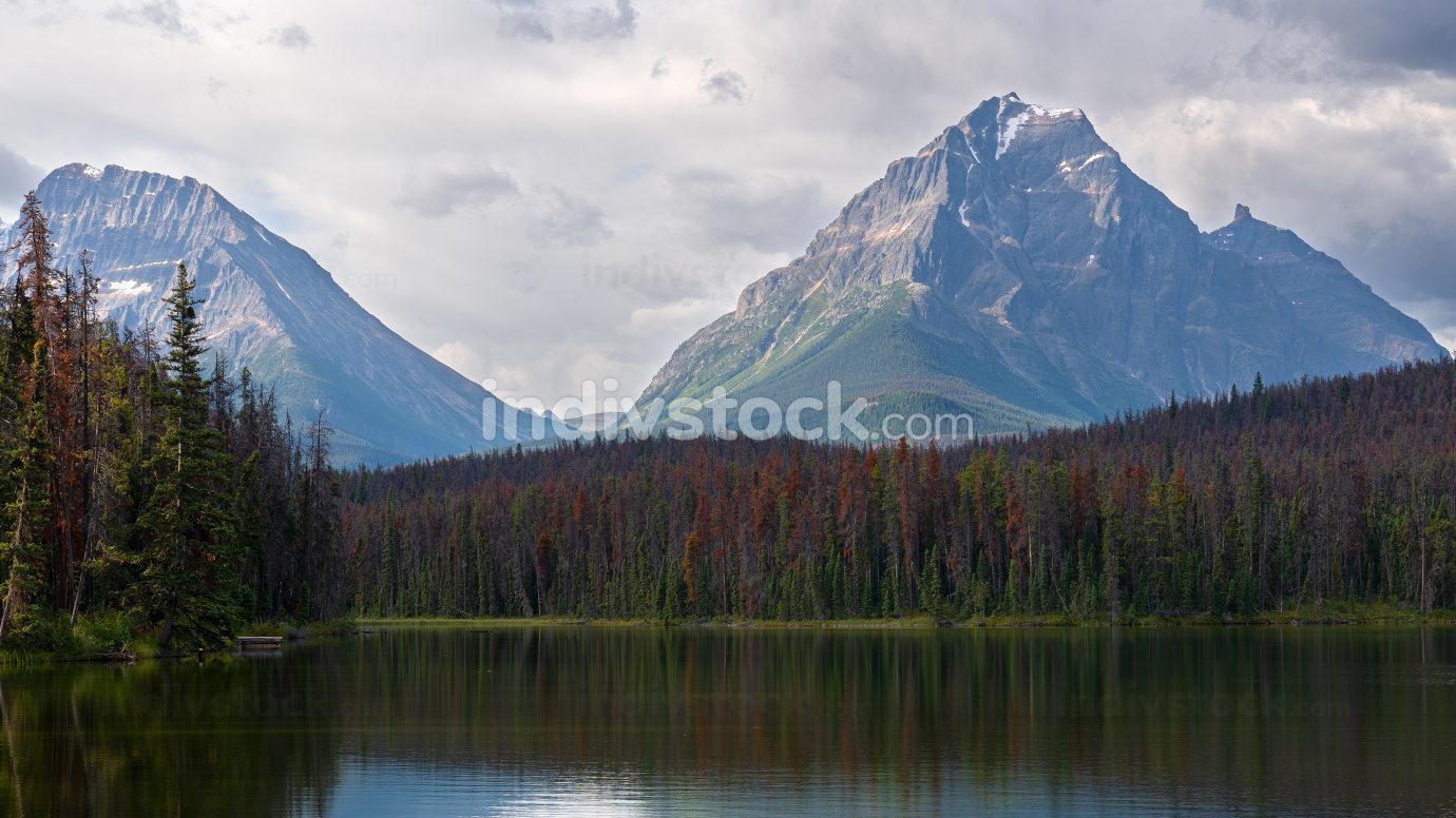 Leach Lake, Jasper National Park, Alberta, Canada