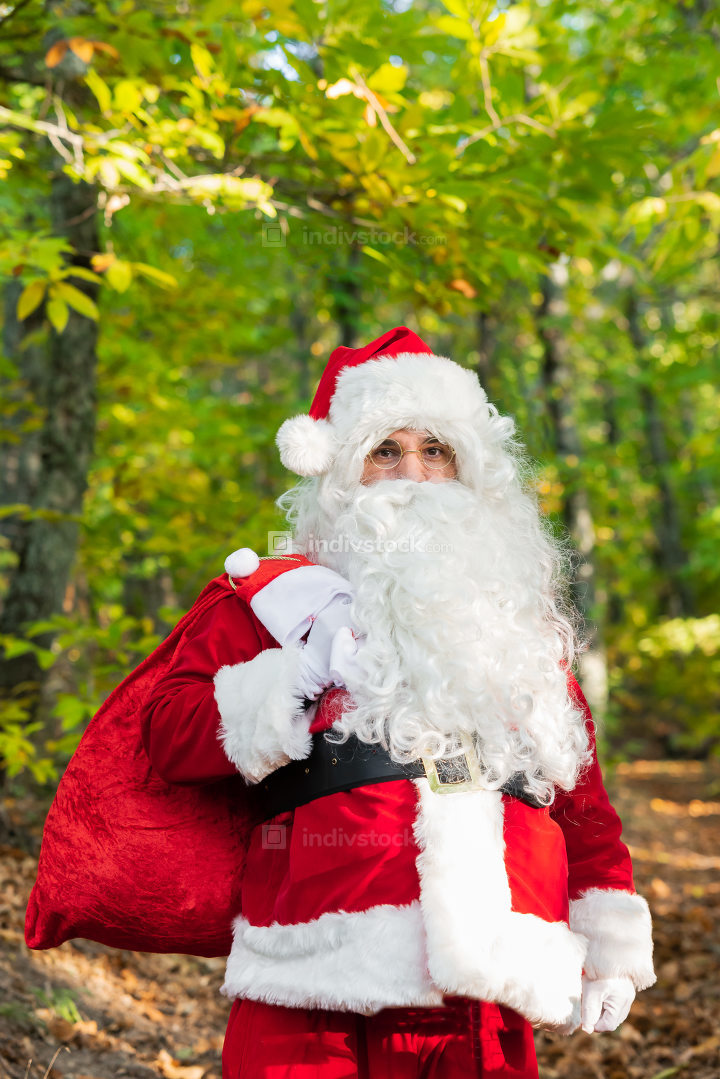 Santa Claus with red bag  in forest with copy space for text