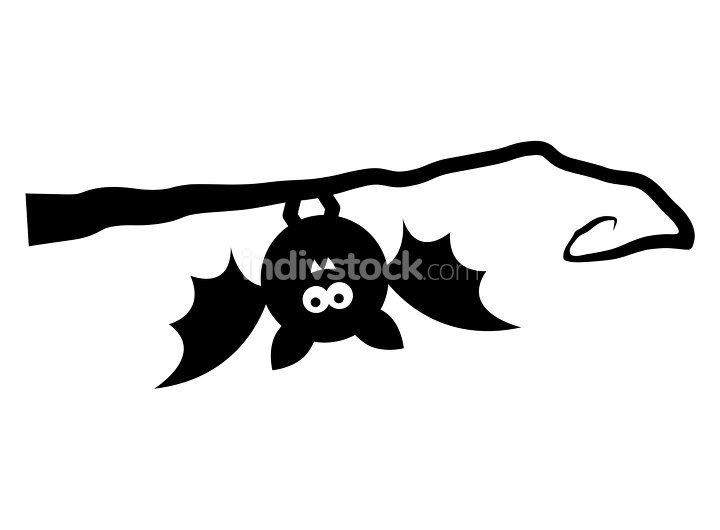 bat upside down on tree isolated on white background