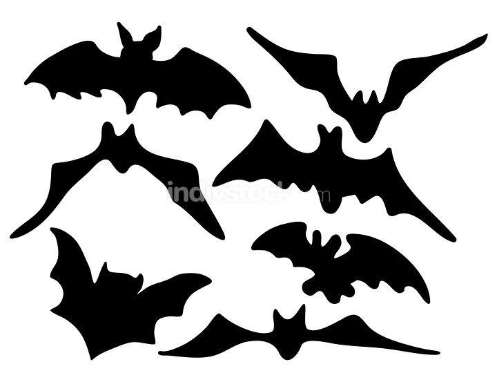halloween creepy scary bat silhouette vector