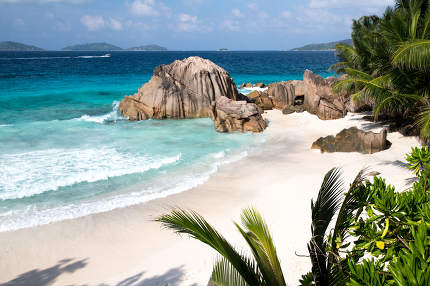 A beach with palms, big stones, turqouise water and waves