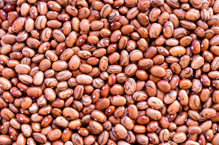Beans of bean ( beans ).  Background of many grains of dried bea