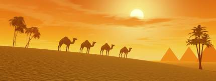Camels in the desert - 3D render