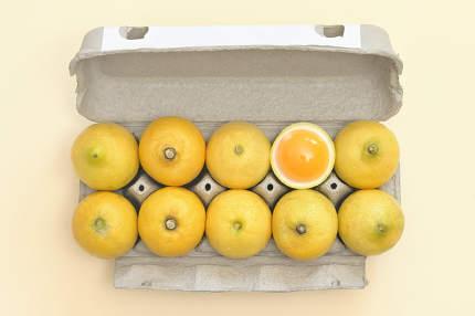 Lemon Dozen Chicken Eggs In A Package