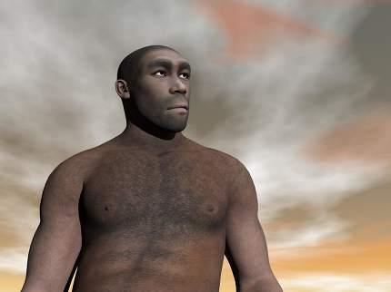 Male homo erectus - 3D render