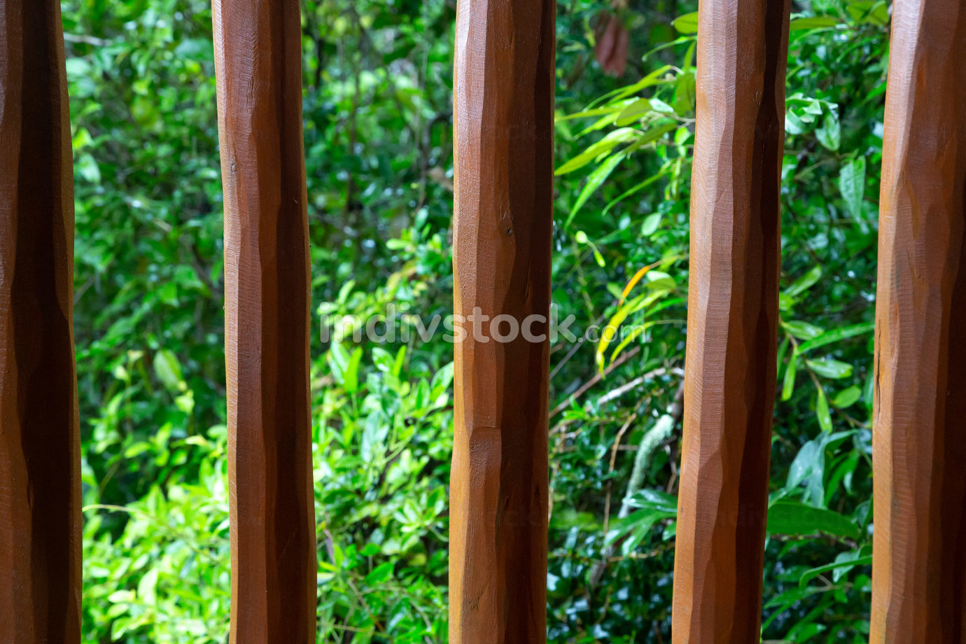Background from a wooden mesh or wood