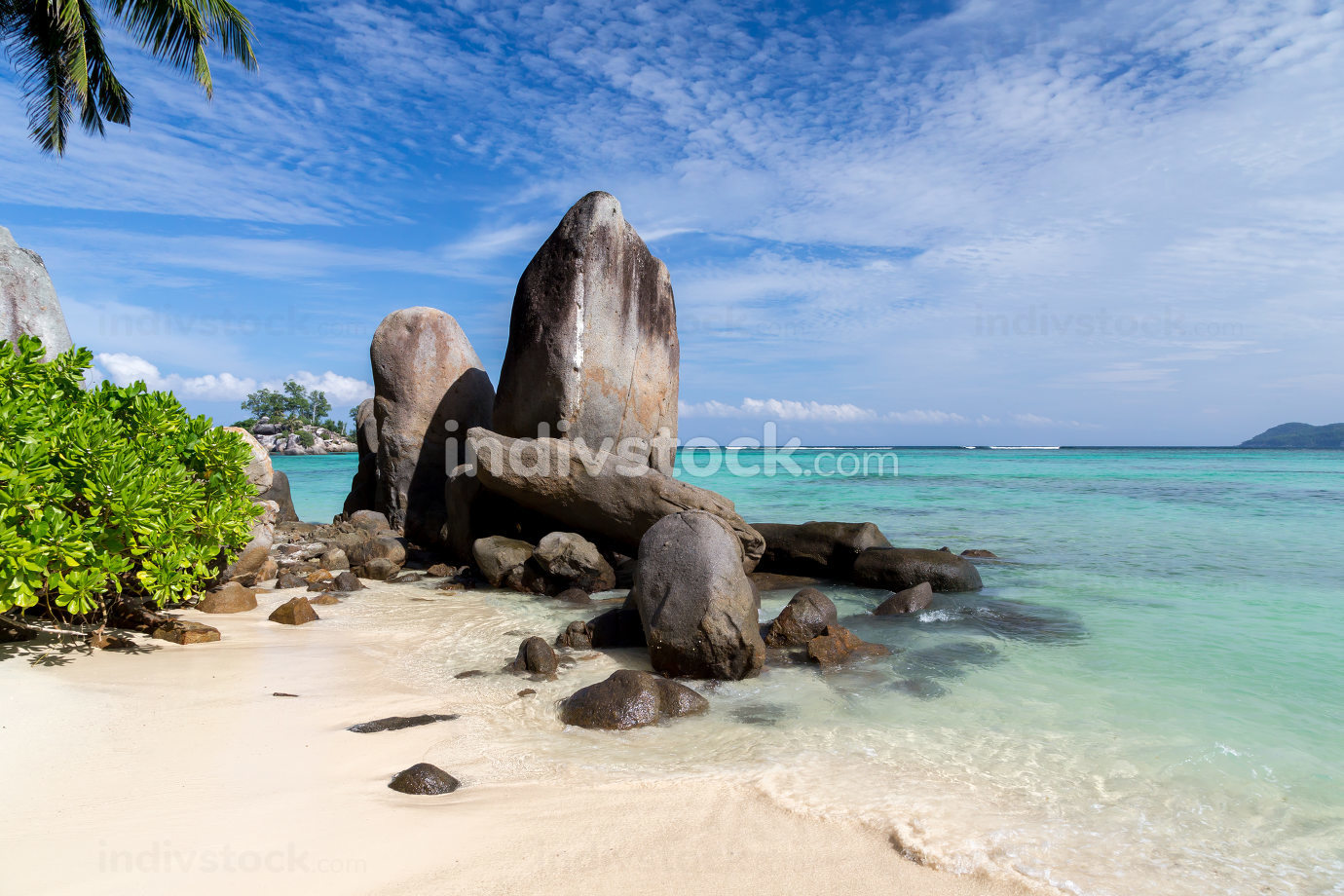 Big stones on the beach with a lot of green plants