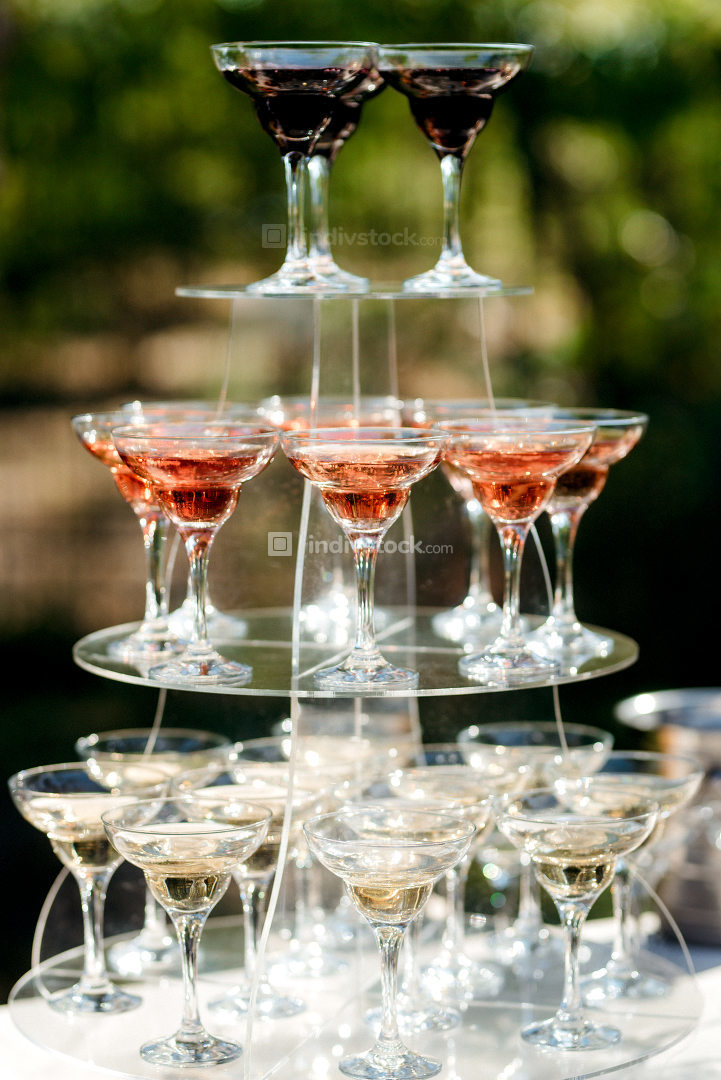 cocktail glasses for wine and champagne
