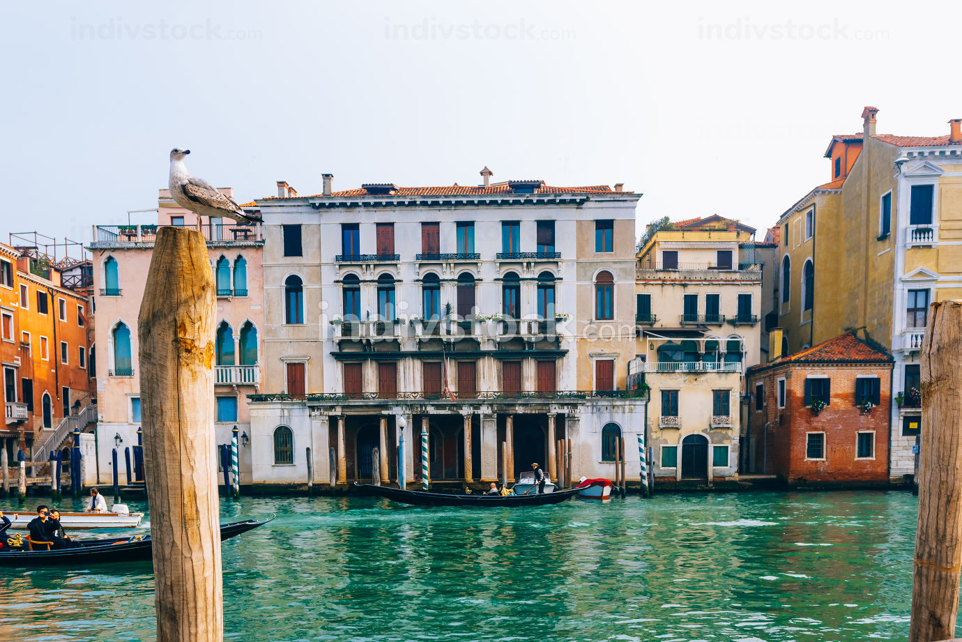 Grand canal of Venice Italy
