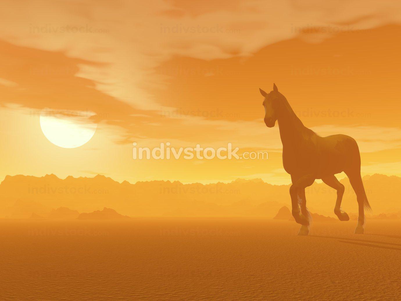Horse in the desert by sunset - 3D render