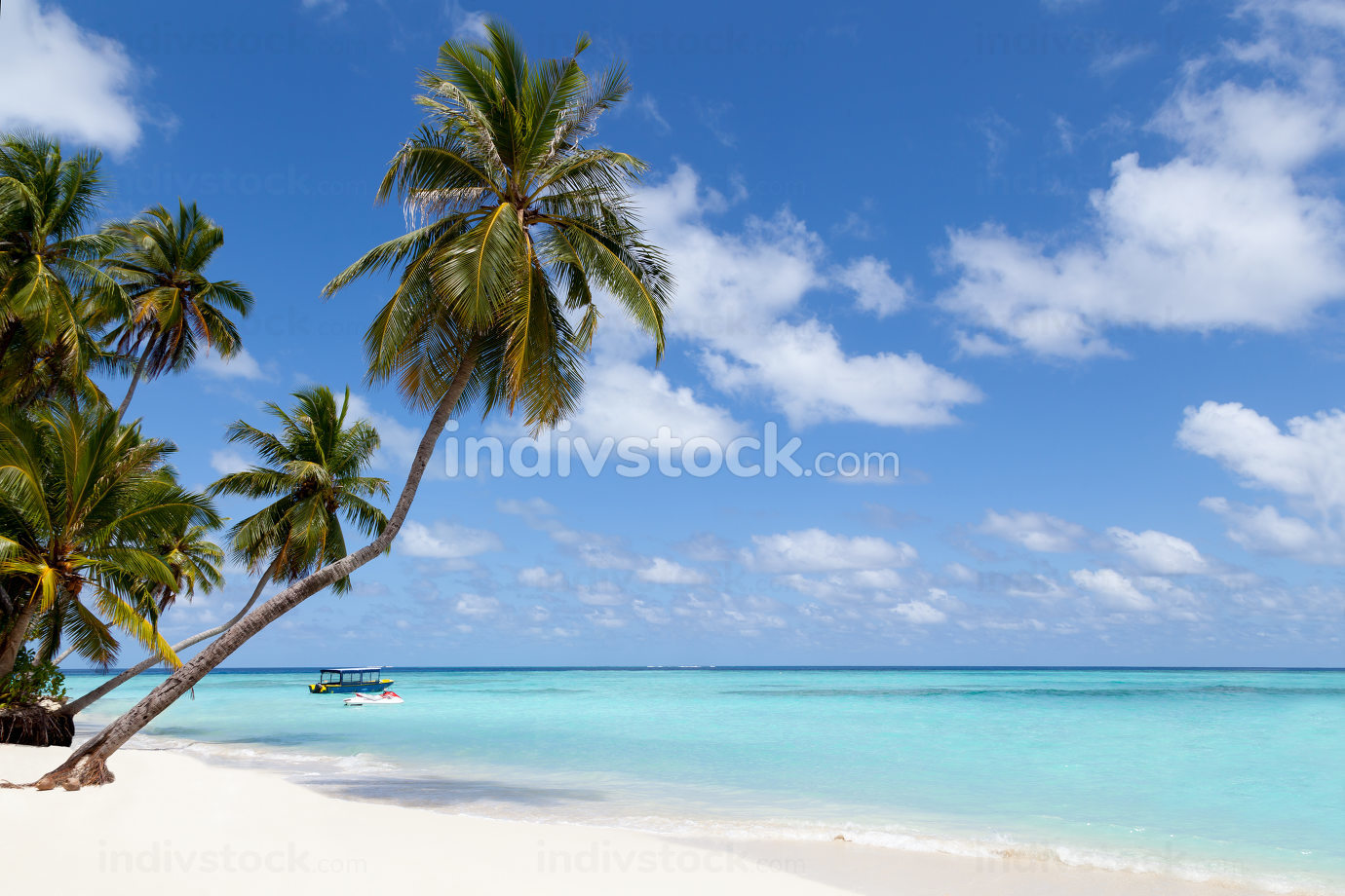 Maldives, a tropical island with palm trees and a view over the