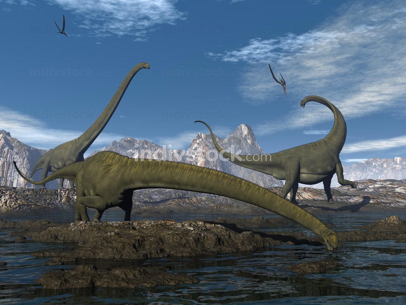 Mamenchisaurus dinosaurs walk and drink - 3D render