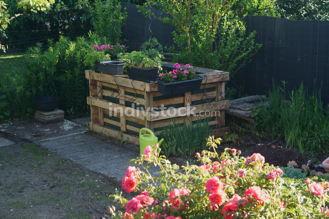 raised bed self made out of pallets