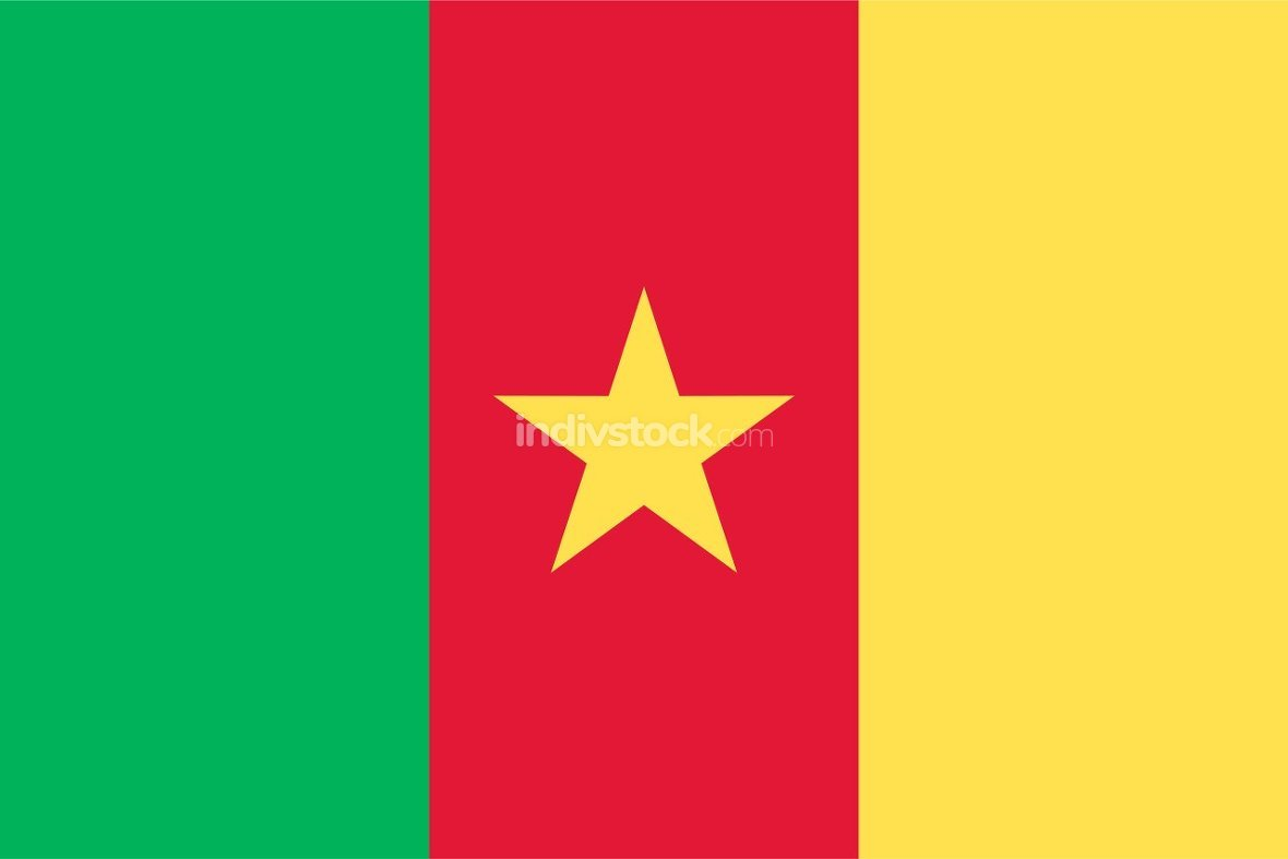 Cameroon officially flag