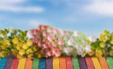 Artificial flowers on the colorful wooden with blue sky