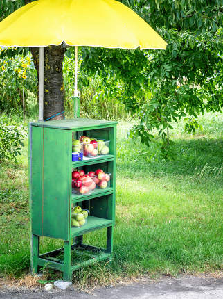 fruit buy self service