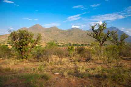 Landscape from Kenya, hills and trees with a blue sky