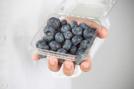 Beautiful young woman holding a bunch of blueberries in her hands