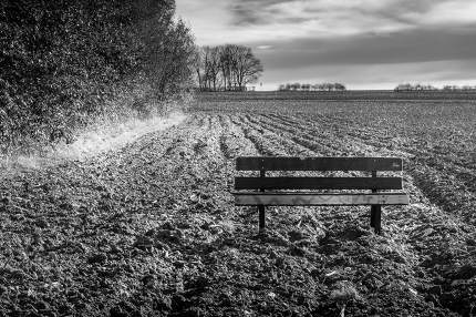 Old wooden bench in a ploughed field