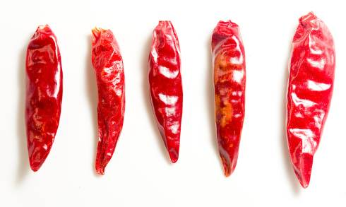 Red hot chili on white background.