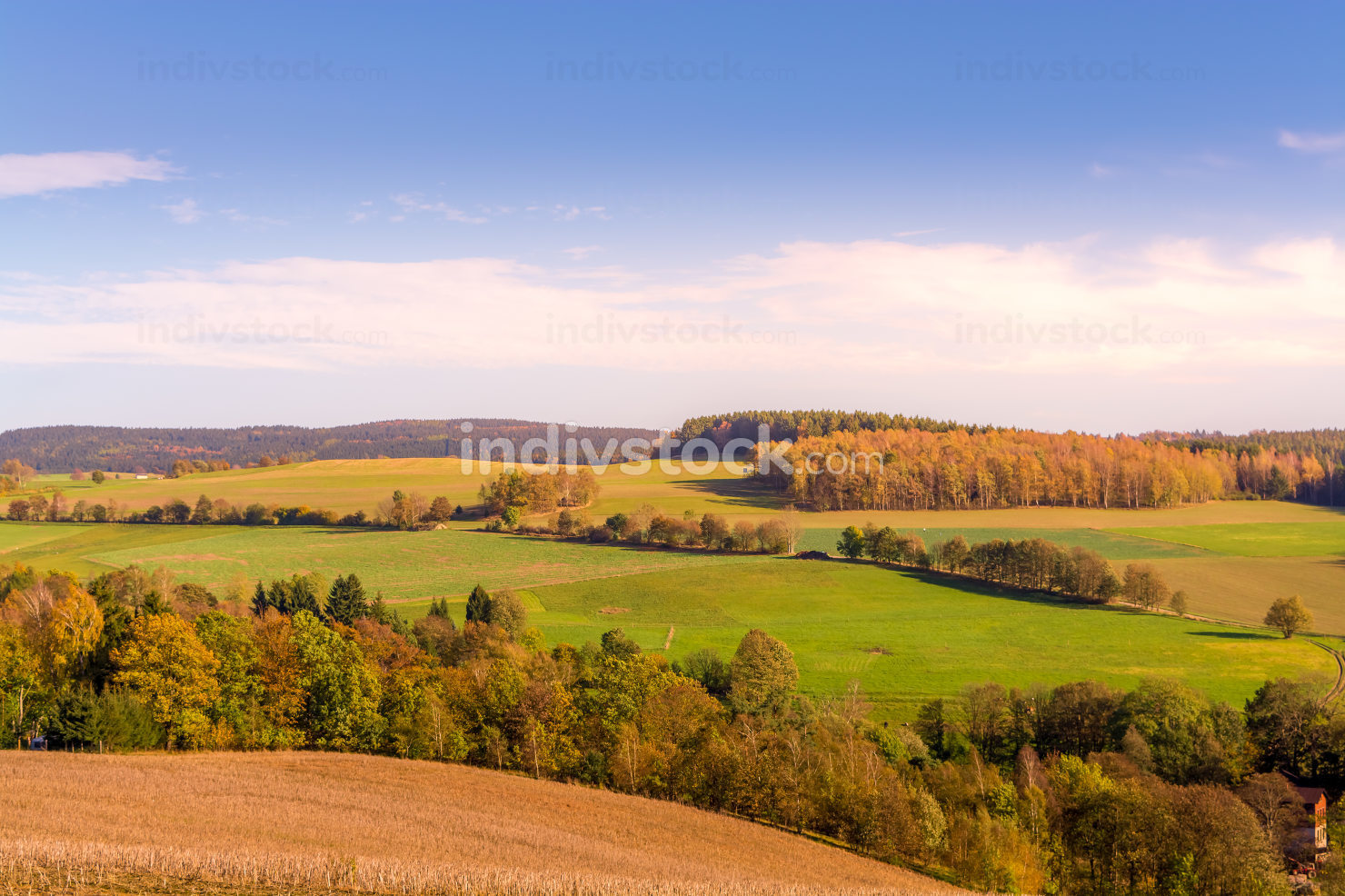 Autumn landscape with colorful foliage on trees