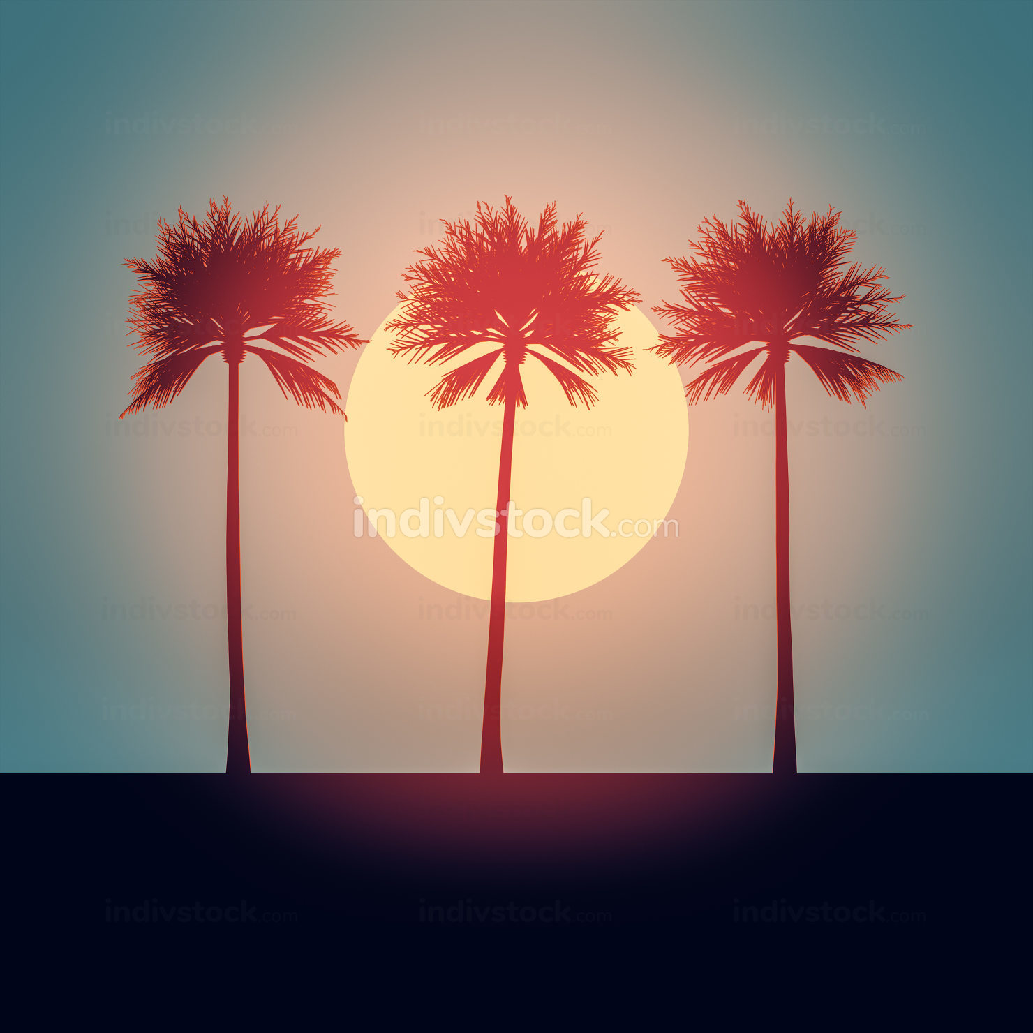 beautiful palm trees sunset background