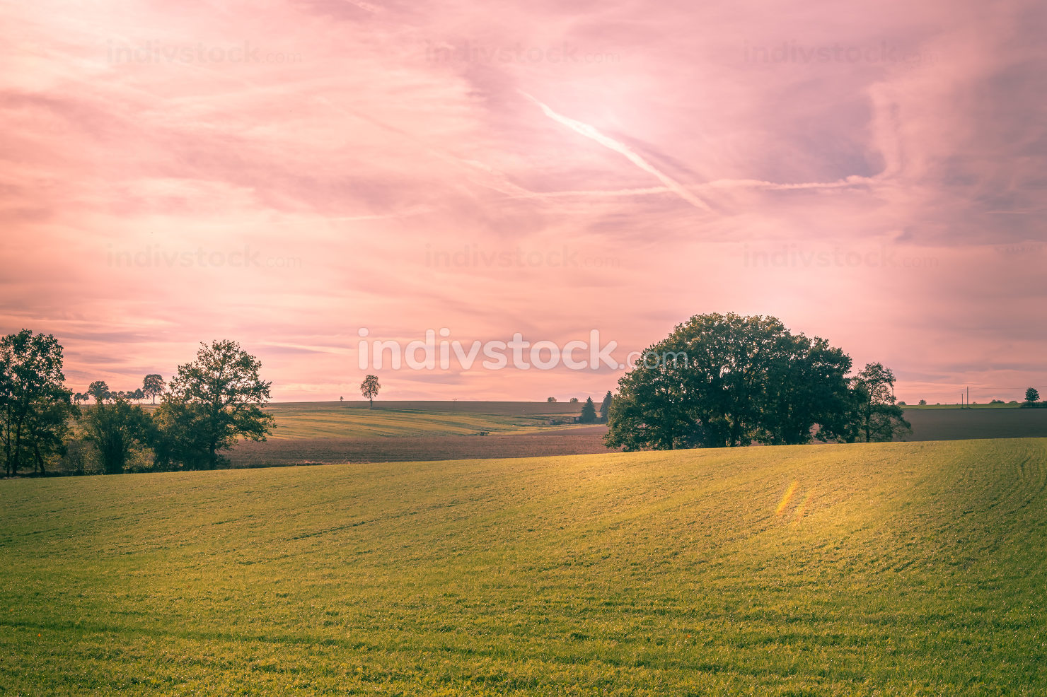 Colorful pink sky at sunset over a green field