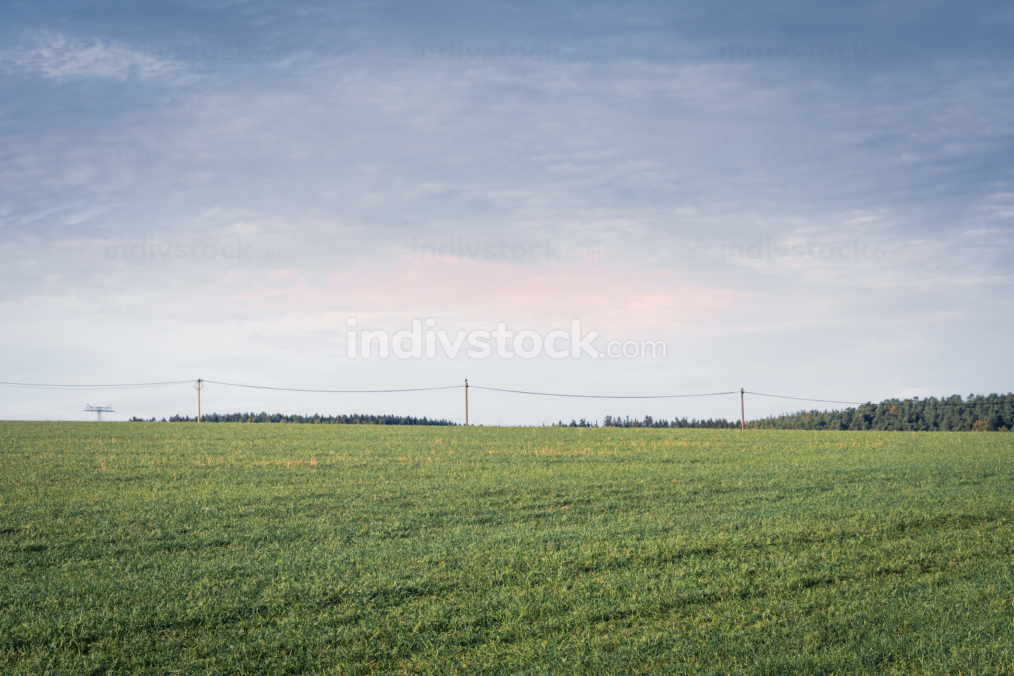 Large flat green field with electricity pylons