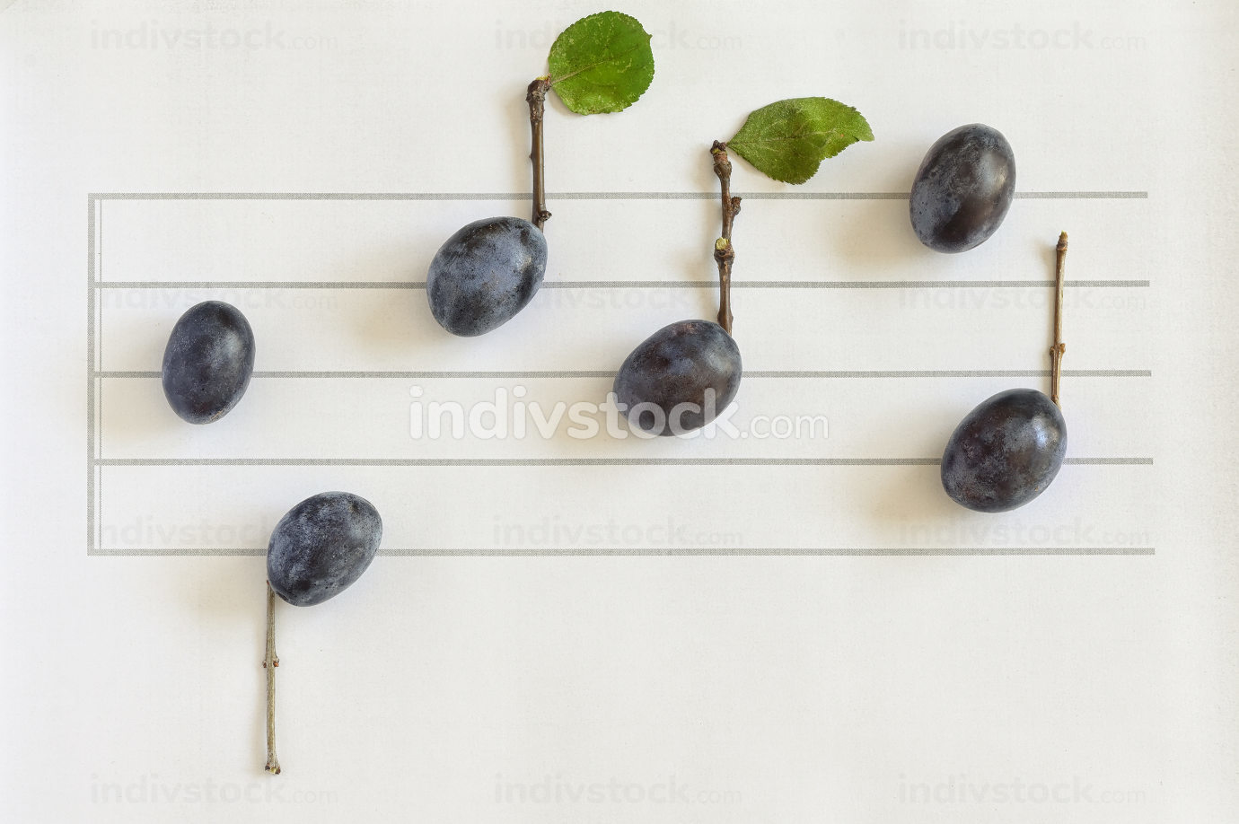 Music Notes From Ripe Plums