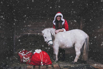 a christmas woman with gifts and a white horse