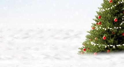 christmas tree background. white snow. christmas 3d-illustration